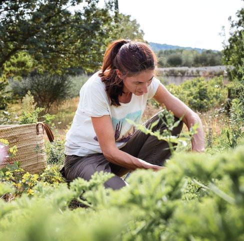 Rencontrez nos producteurs : Estelle, productrice de plantes aromatiques