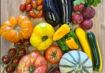Comment bien choisir ses fruits et légumes d'été
